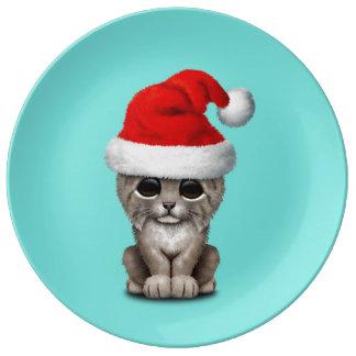 Cute Lynx Cub Wearing a Santa Hat Plate