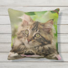 Cute Maine Coon Cat Kitten Portrait - for Outside Cushion