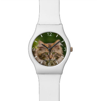 Cute Maine Coon Kitten Cat Head Photo - dial-plate Watch