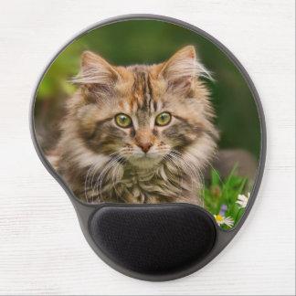Cute Maine Coon Kitten Cat Portrait - ergonomic Gel Mouse Pad