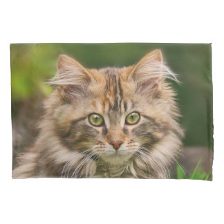 Cute Maine Coon Kitten Cat Portrait - Pillow-Cover Pillowcase