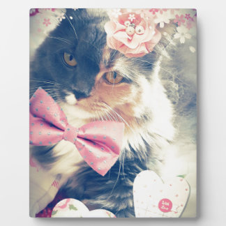Cute Maine Coon Kitten Retro Style Plaque