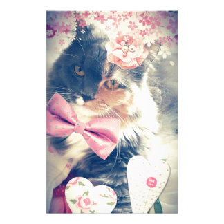 Cute Maine Coon Kitten Retro Style Stationery