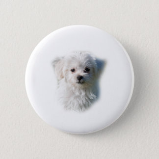 Cute Maltese Dog 6 Cm Round Badge