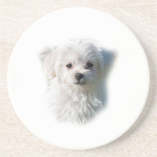 Cute Maltese Dog Coaster
