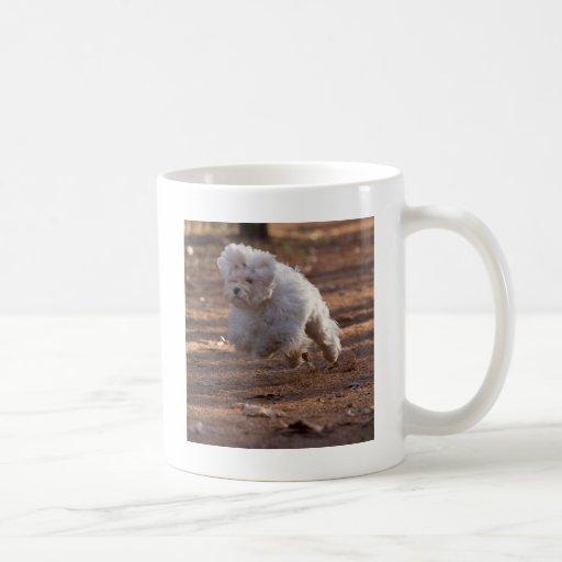 Cute Maltese Dog Coffee Mug