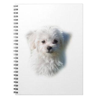 Cute Maltese Dog Notebooks