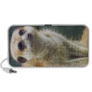 Cute Meerkat at Attention, Kansas City Zoo Notebook Speaker