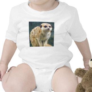 Cute Meerkat at Attention Kansas City Zoo T-shirts