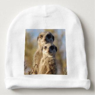 cute meerkats 1214 baby beanie