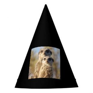 cute meerkats 1214 party hat
