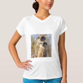 cute meerkats 1214 T-Shirt