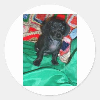 """Cute Mini Dachsund Puppie """"Anchor"""" Round Sticker"""