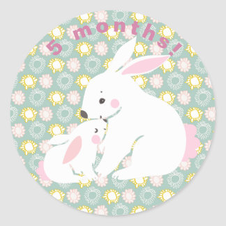 Cute mother & baby bunny Milestone Stickers
