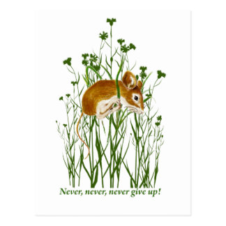 Cute Mouse Motivational Quote Never Give up Postcard