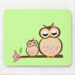 Cute mum and baby owl