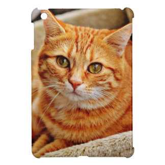 Cute Orange Cat Case For The iPad Mini