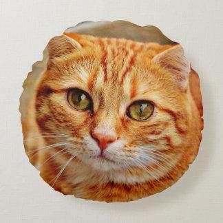 Cute Orange Cat Round Cushion