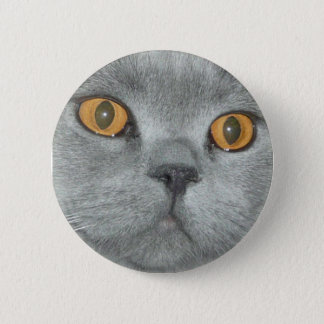 Cute Orange Eyed Kitty Button