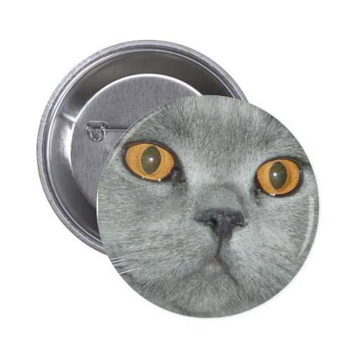 Cute Orange Eyed Kitty Button