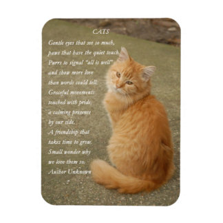 Cute Orange Kitten Photo Cat Poem Magnet