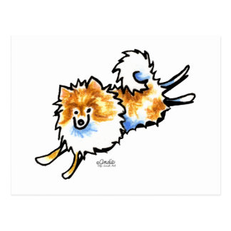 Cute Orange White Pomeranian Postcard