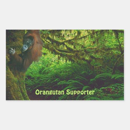 Cute Orangutan Playing in the Jungle Stickers