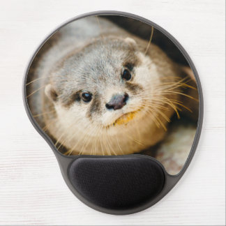 Cute Otter, Animal Portrait, Nature Photography Gel Mouse Mats
