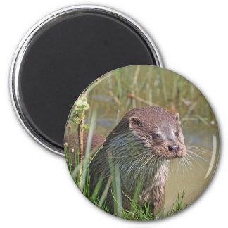 Cute otter photo magnet, gift idea magnet