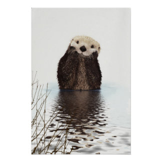 Cute Otter Wildlife Image Poster