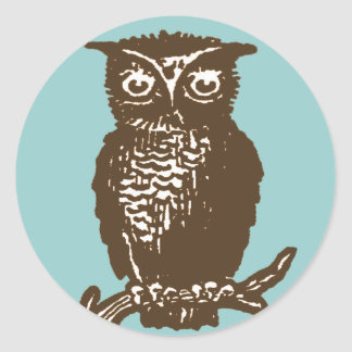 Cute Owl Classic Round Sticker