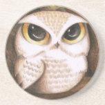 Cute Owl Coasters