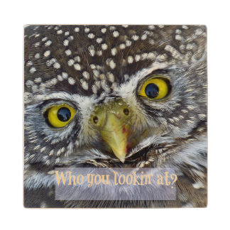 Cute Owl Face with Words Wood Coaster