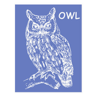 Cute Owl Postcard