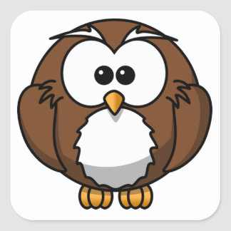 Cute Owl Square Sticker