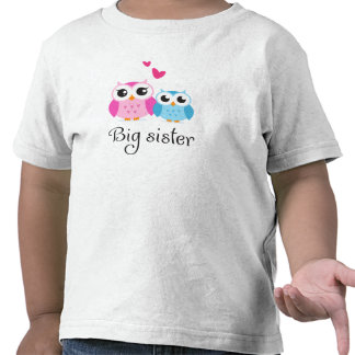 Cute owls big sister little brother cartoon tshirt