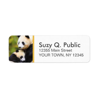 Cute Panda Bear Custom Address Labels