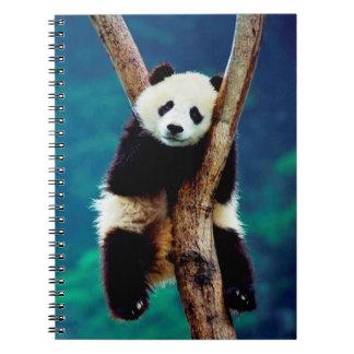 Cute Panda Bear Notebooks