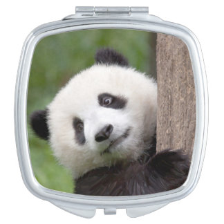 Cute Panda cub Compact Mirrors