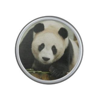 """Cute Panda"" Speaker"