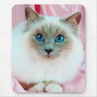 Cute Pedigree Cat Mouse Pad