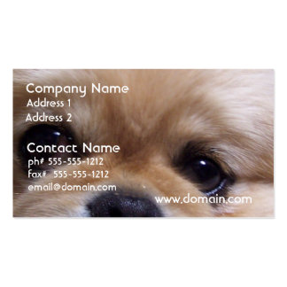 Cute Pekingese Puppy Business Cards