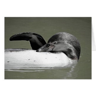 Cute Penguin Swimming Blank Card