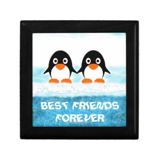 Cute Penquin On Iceberg Box-Best Friends Small Square Gift Box