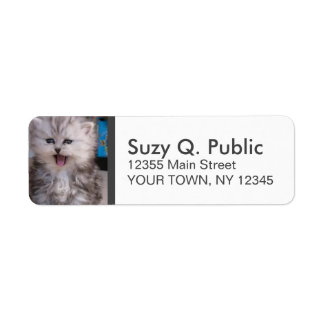 Cute Persian Cat Label Return Address Label