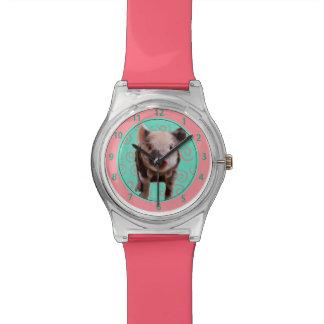 Cute Pig - Turquoise & Melon Swirls Watch