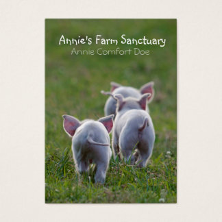 Cute Piglets Farm Sanctuary Business Card