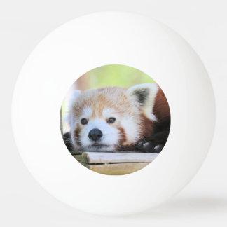 Cute Ping Pong Ball