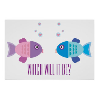 Gender reveal posters for Fishing gender reveal