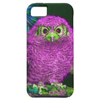 Cute Pink Owl Multi Products Selected iPhone 5 Cases